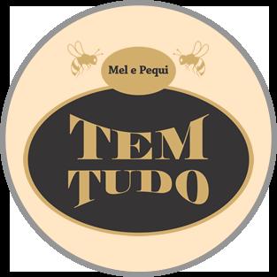 TEMTUDO